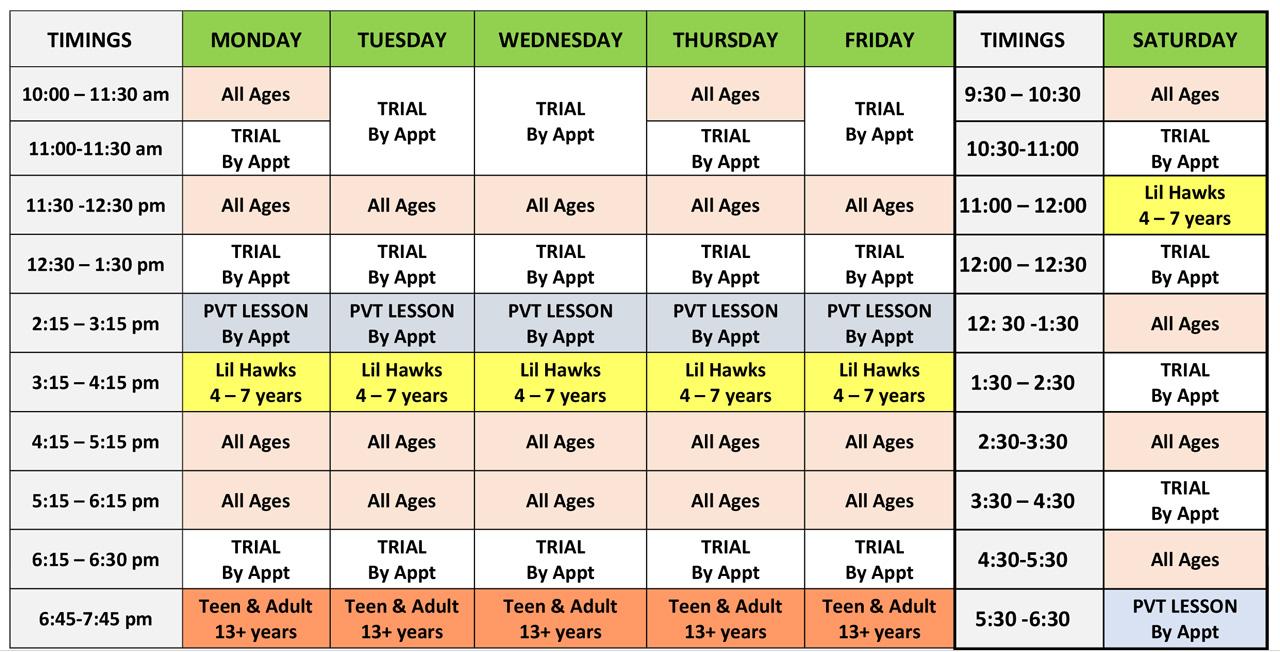 skye martial arts schedule